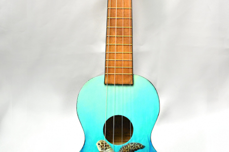 Treasure Ukulele - Full View