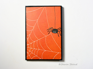 Spider 5x7 Folio Mini Scrapbook Album